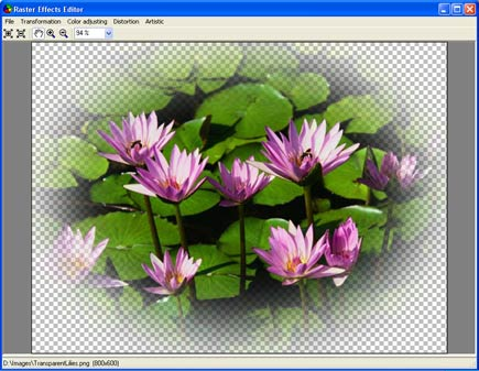 Aurigma Graphics Processor 1.9