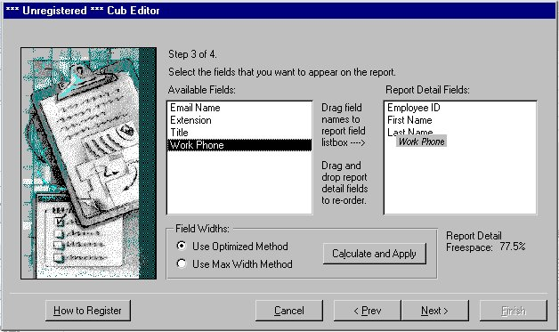 Cub Editor for MS Access 97 97.20