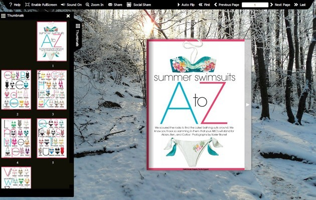 Flash flip book template of Snow 1.0