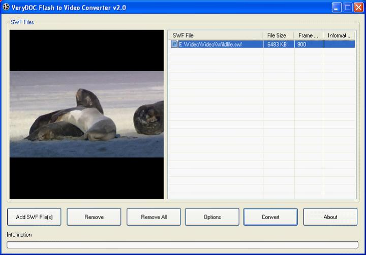 Flash to Video Converter 1.0
