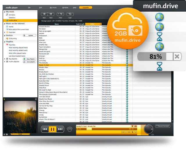 Mufin player Pro 2.51 Build 248