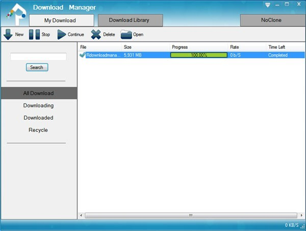 Reasonable Download Manager 5.2.12
