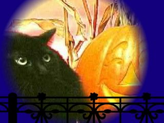 Screechy Cat Halloween Wallpaper 2.0