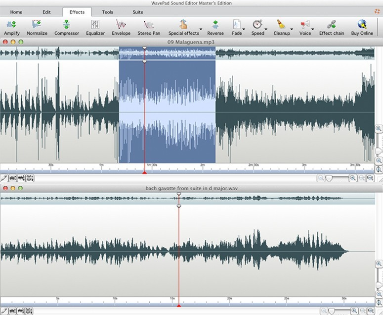 Wavepad Audio Editor for Mac 5.09